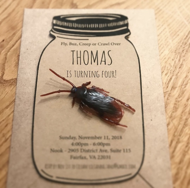 Bug Party Invitation
