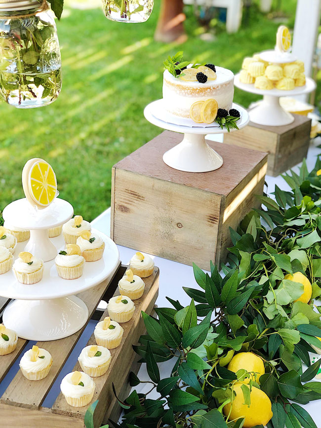 Lemon Themed Baby Shower Desserts