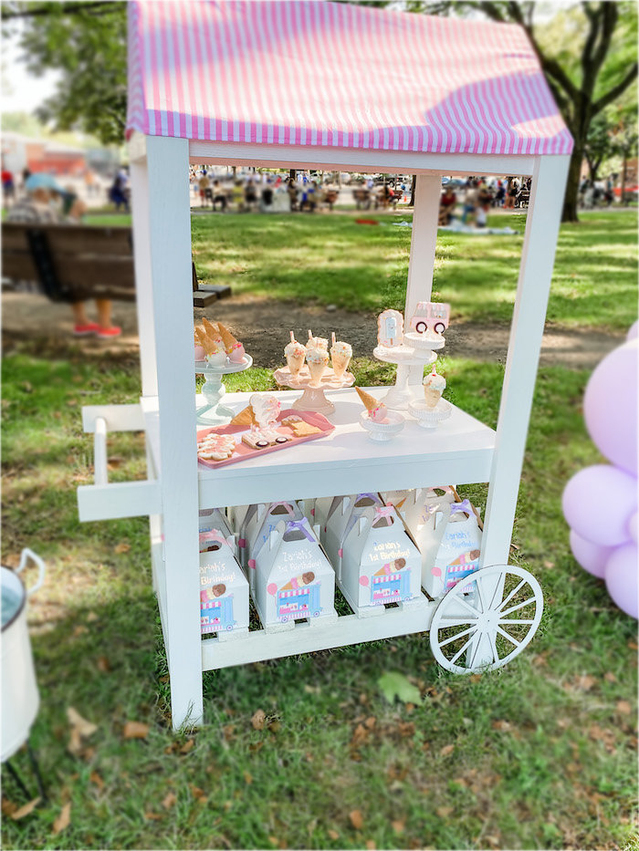 Ice Cream 1st Birthday Picnic